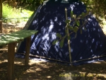 camping-picnic-el-estero-1